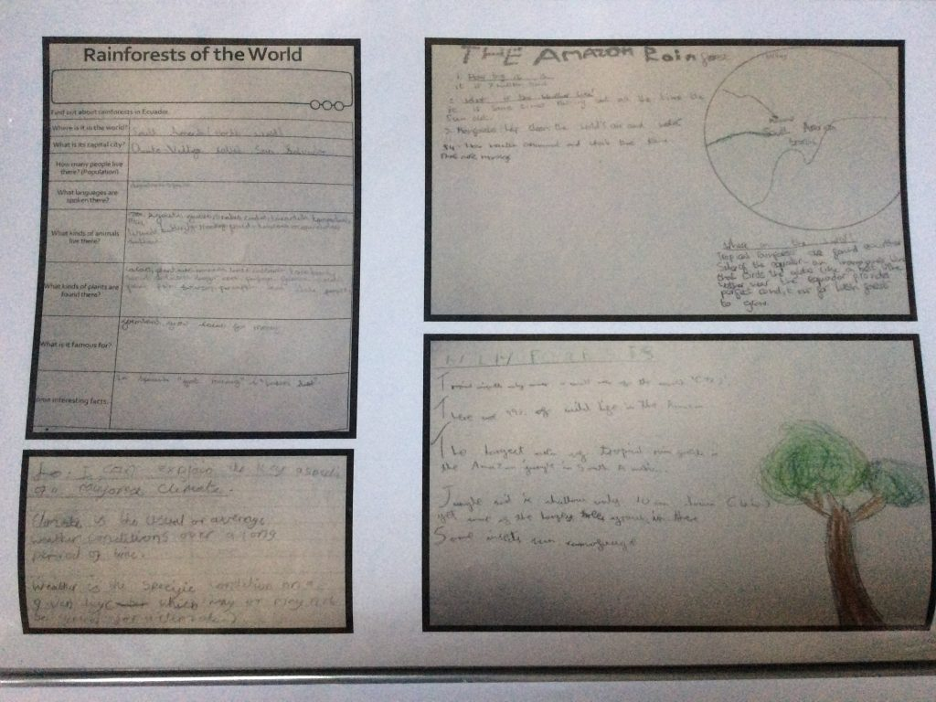 pupil work about the Amazon rainforest