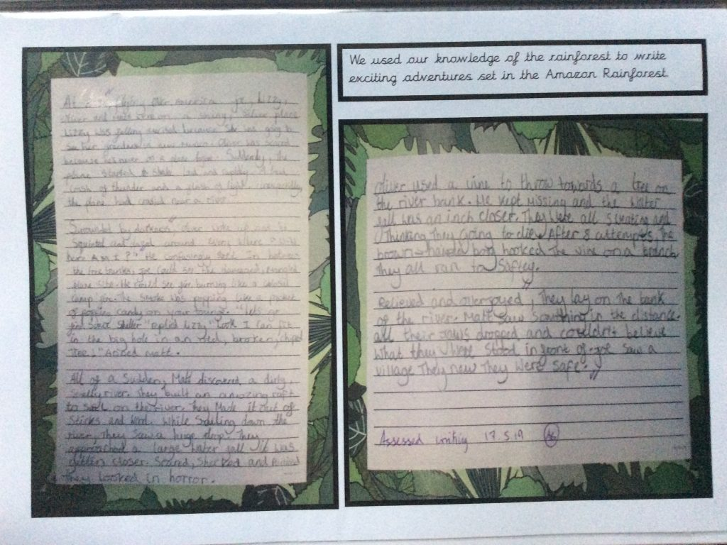 writing about the rainforest