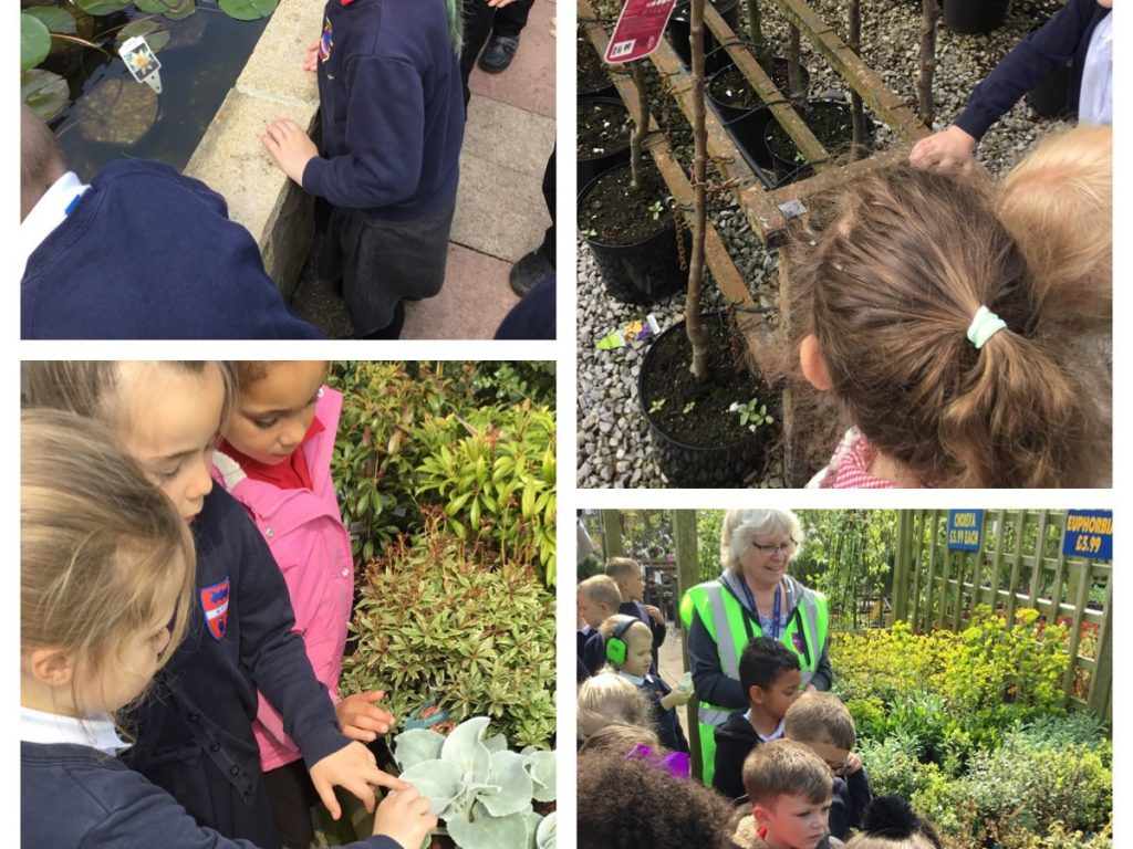 planting plants at the garden centre