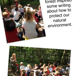learning about the environment